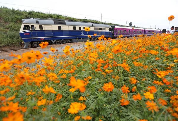 秦皇岛新建火车站离海仅55米 可探寻奇妙的山海之旅