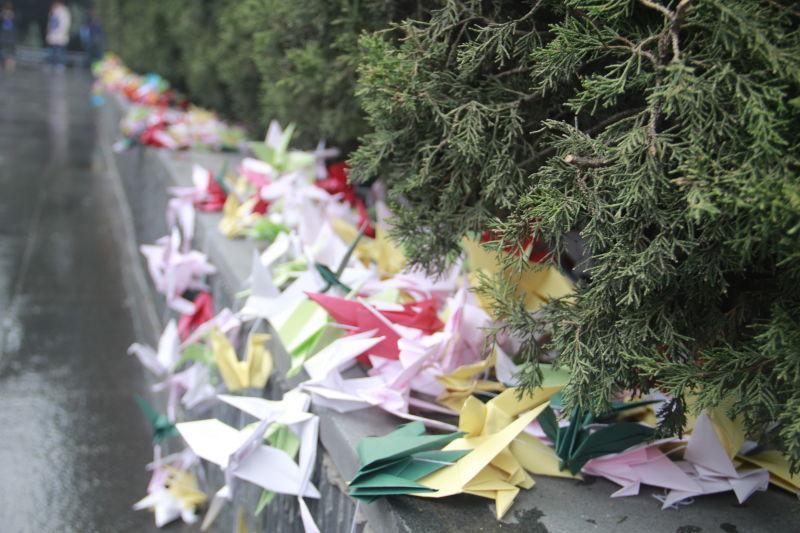 澳门游戏网址:专访:我为什么每年带学生跨越千里直面南京大屠杀?