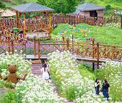 村村可游玩 处处是风景