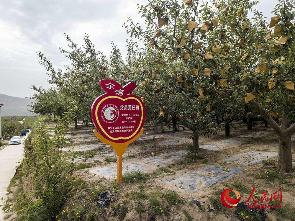 苹果产业助力甘肃静宁农民打赢脱贫攻坚战