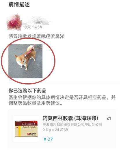 人民直击:宠物照片充当处方竟能网购处方药