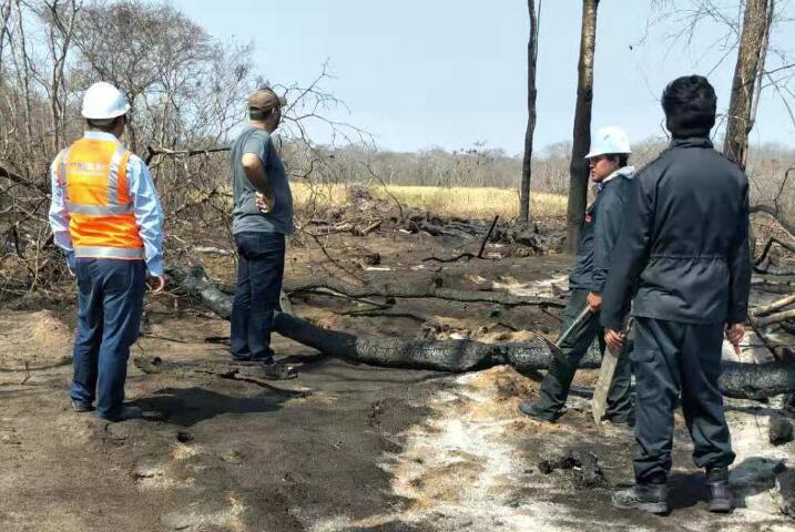 拯救燃烧的亚马逊雨林中建市政在一线