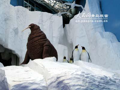 极地海洋动物馆一角