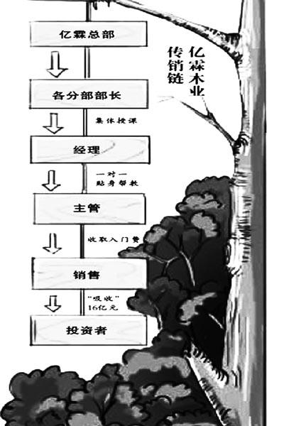 亿霖木业案善后_