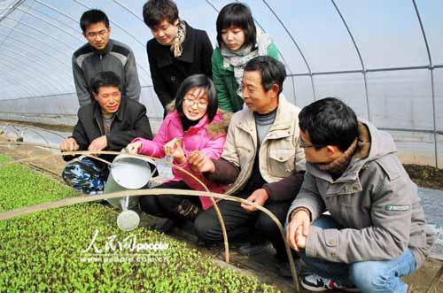 姜堰/姜堰21名大学生村官领办果蔬种植园