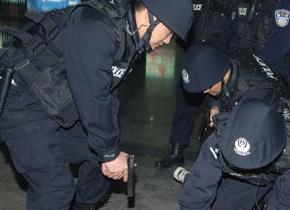 公安/重大恐怖组织案件告破海内外广泛关注