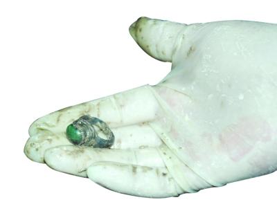 随葬的绿宝石戒指 ..