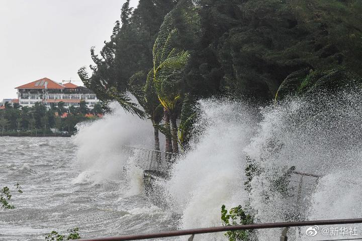 """台风""""圆规""""在海南省琼海市博鳌镇沿海登岸太平洋在线下载"""